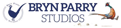 Bryn Parry Studios