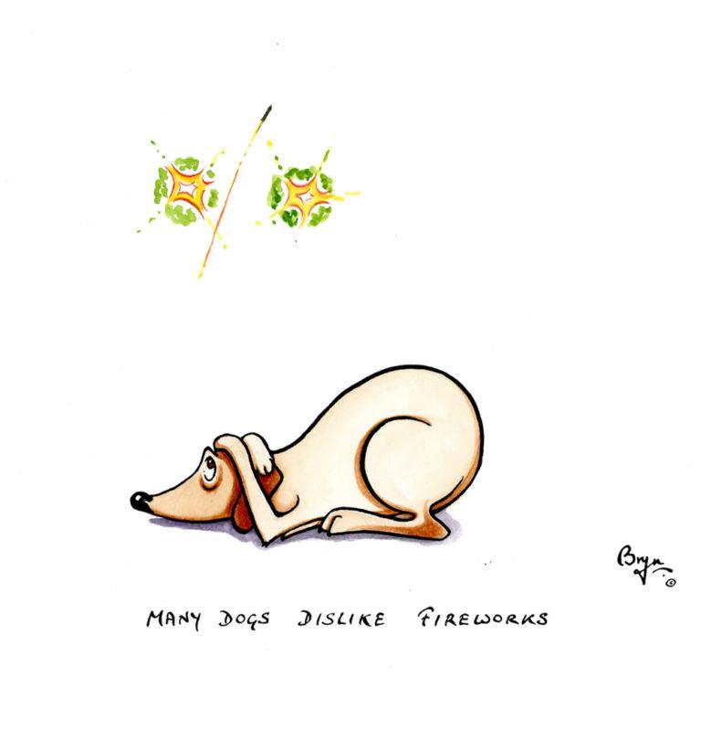 DT,-Many-dogs-dislike-fireworks
