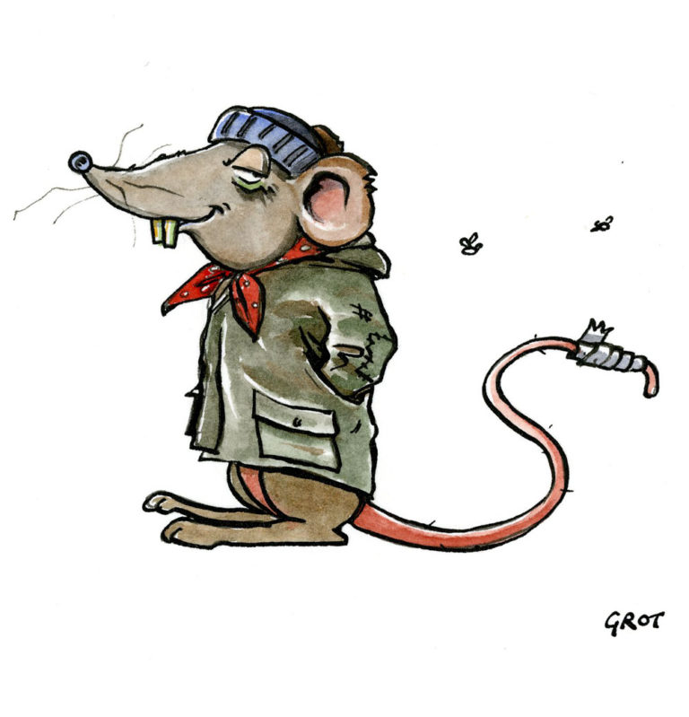 Grot-the-rat