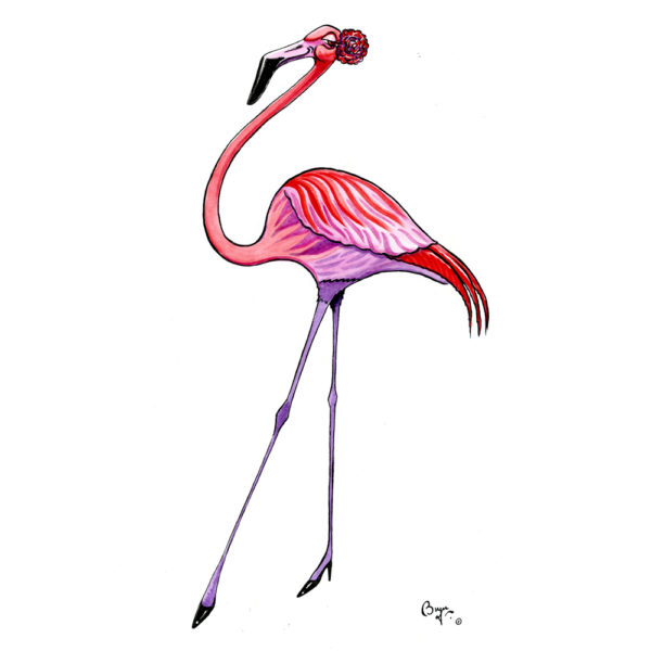 OA-UF,-Flamingo-Flamenco