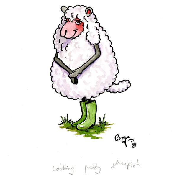 OA-UF,-Looking-pretty-sheepish