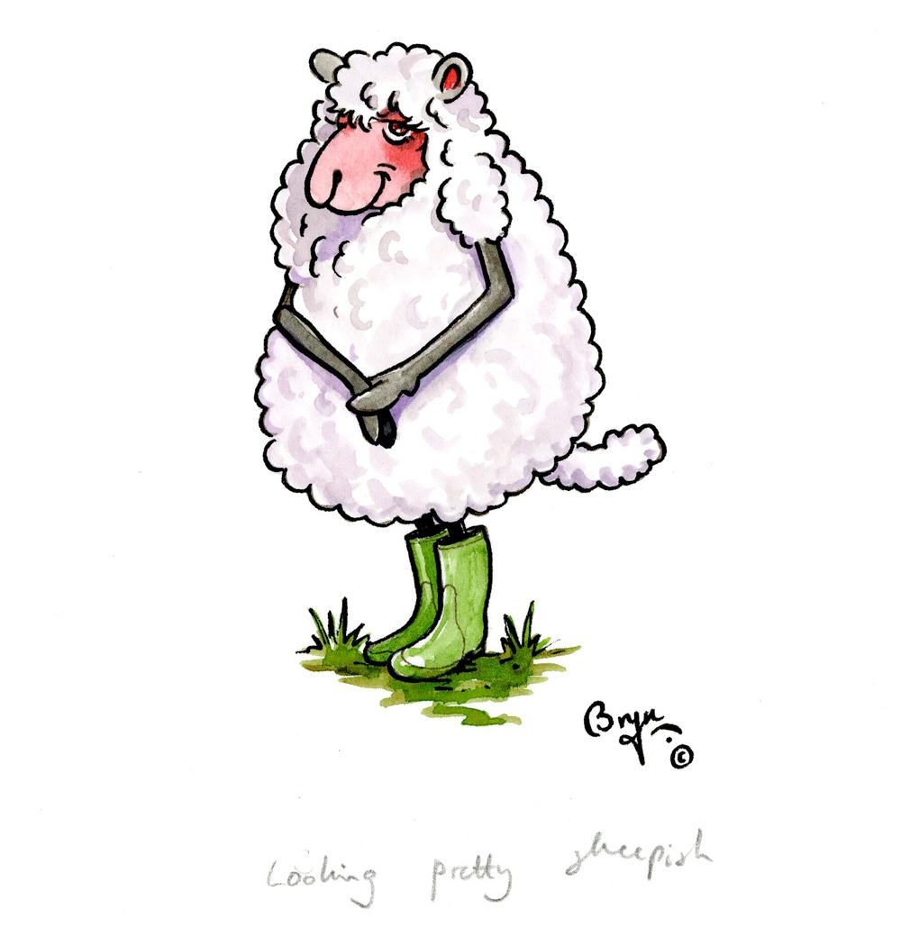 looking pretty sheepish bryn parry studios