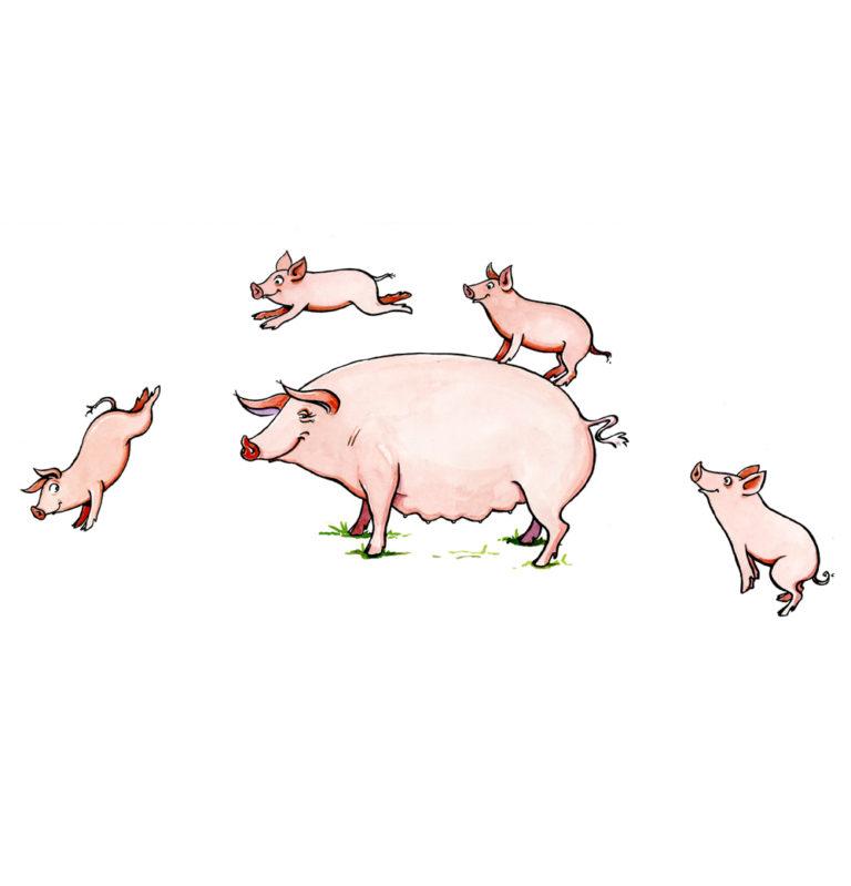 OA-UF,-Piggy-back-(ink-marked)