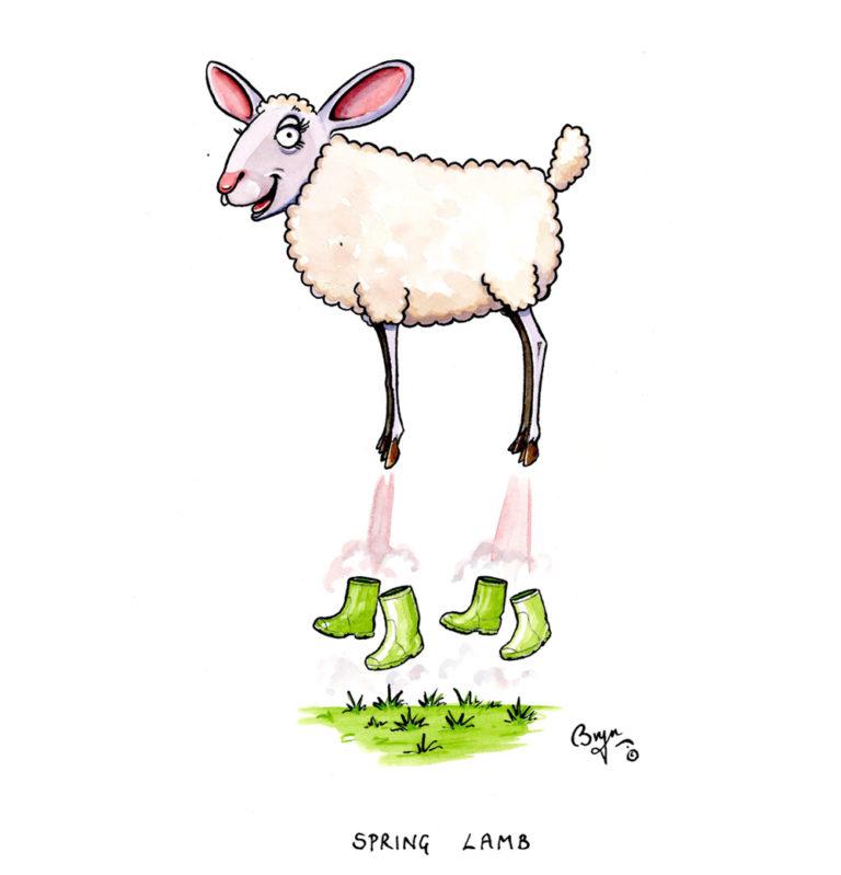 OA-UF,-Spring-Lamb