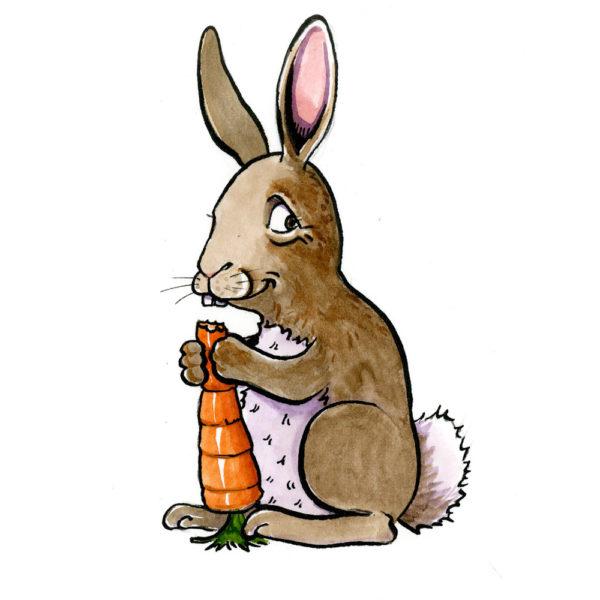 OA,-rabbit-