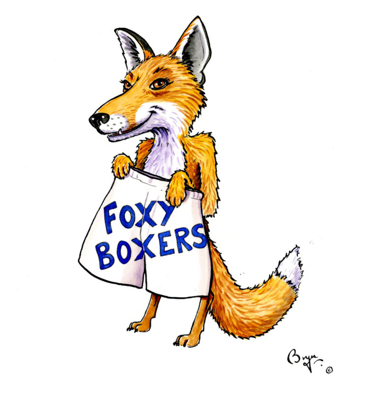 OA_Animals.-Foxy-Boxers