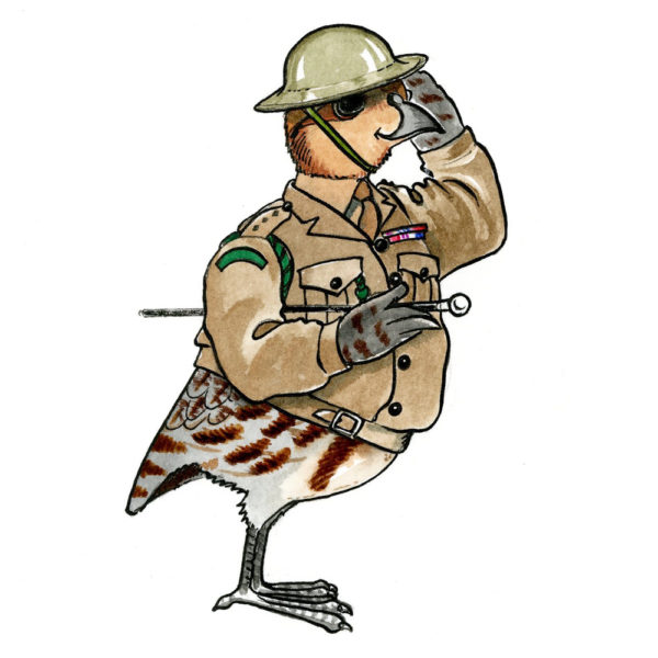 OA_Birds.-English-Partridge