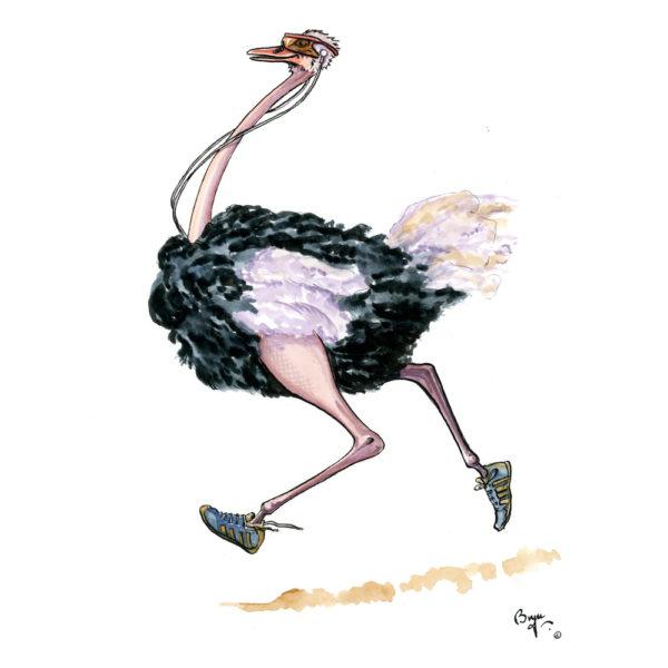 OA_Birds.-Ostrich-Jogging