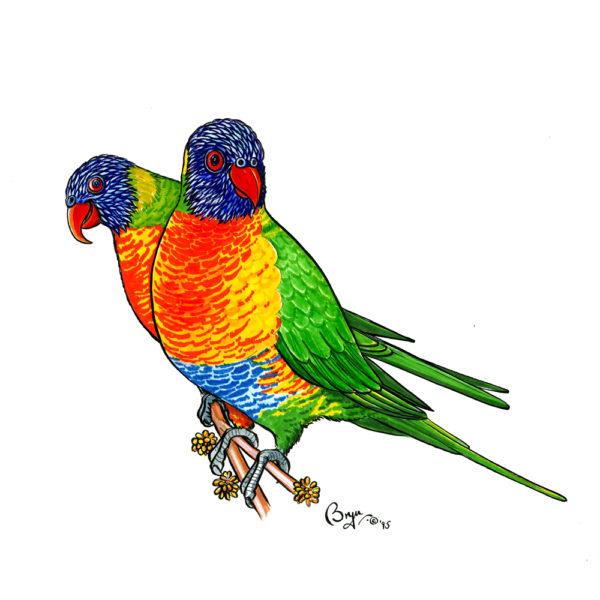 OA_Birds.-Rainbow-Lorrikeets