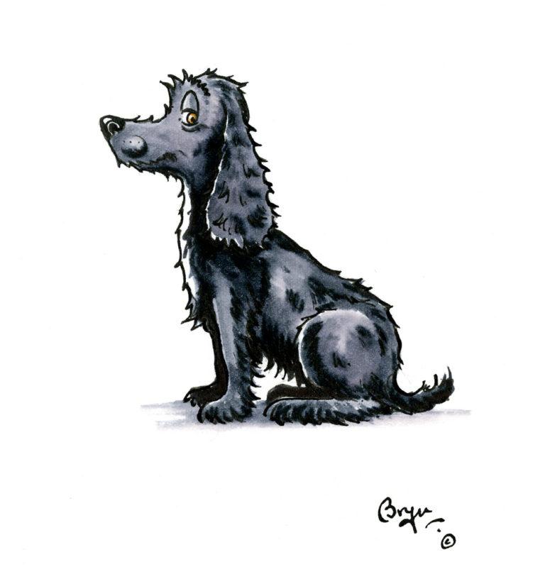 OA_Dogs-Cocker-'Sit!'