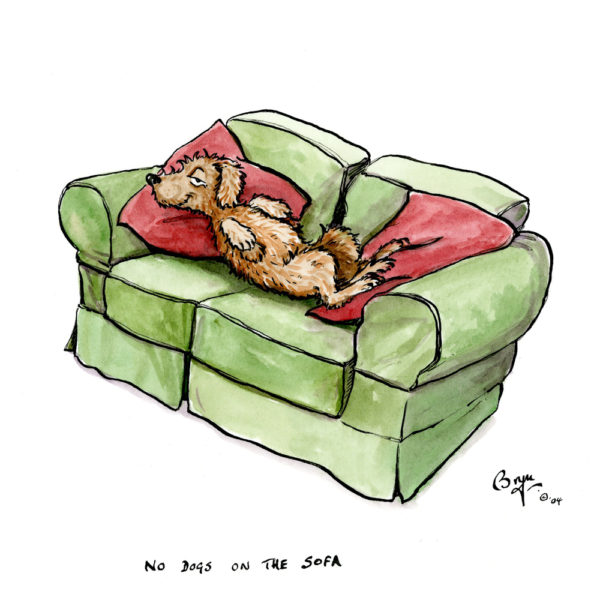 OA_Dogs.-House-rules,–No-dogs-on-the-sofa
