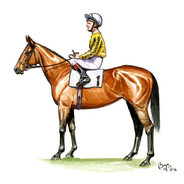 OA_Horses-Horse-and-Jockey-study