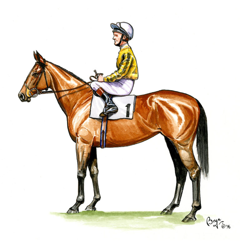 OA_Horses-Horse-and-Jockey-study