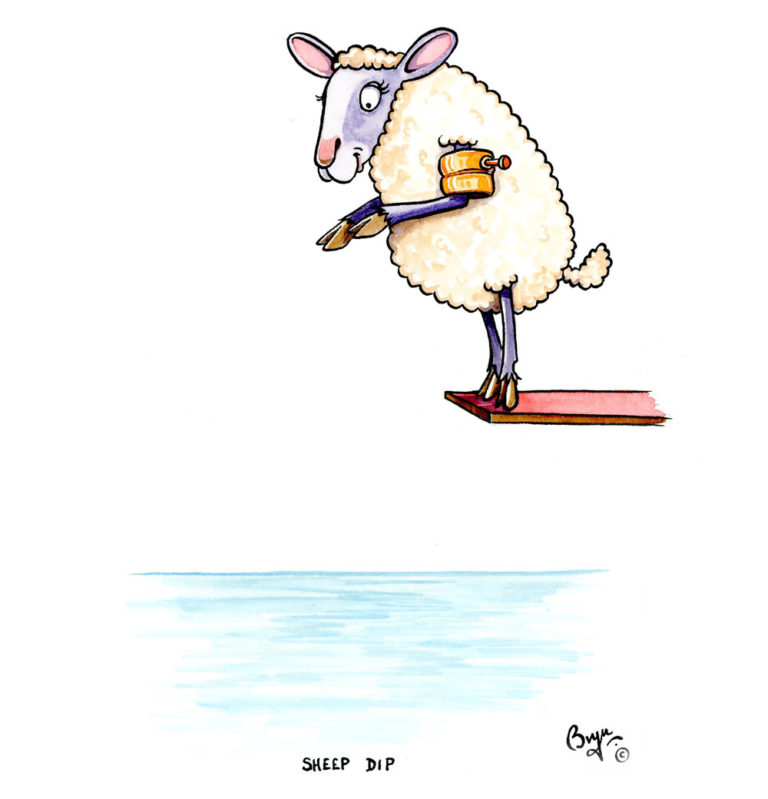 Sheep-dip