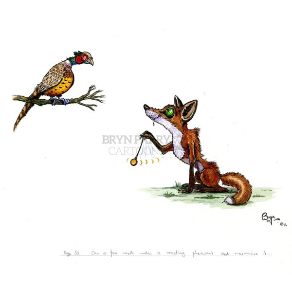 Can-a-fox-mesmerize-a-pheasant_—32314